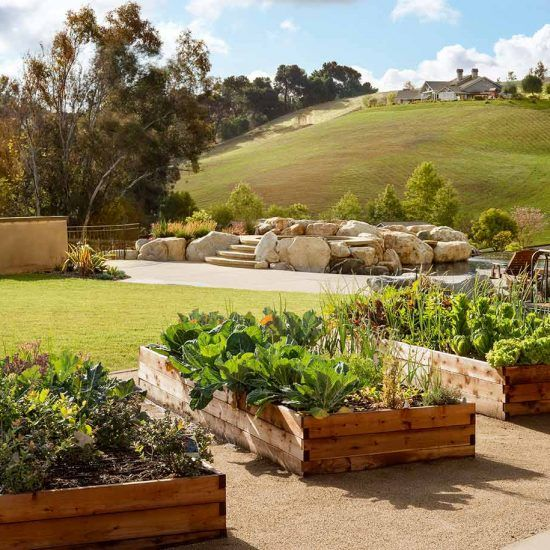 Rustic Contemporary Landscaping and Garden Planters Designed by HartmanBaldwin
